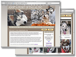 Adopt a Husky of Dallas